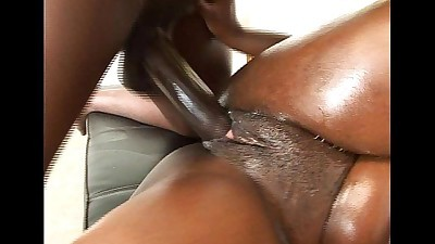 Busty ebony chick gets a rasta cock