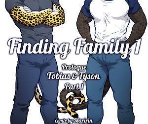 Finding Family 1